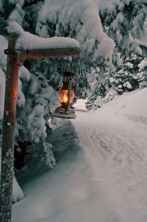 "snowflakes-and-sugarcookies: ""christmas blog """