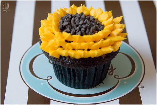 Sunflower - Trophy Cupcakes & Party