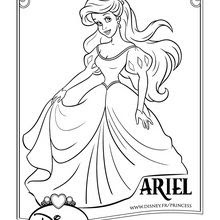 Coloriages Ariel Frhellokidscom
