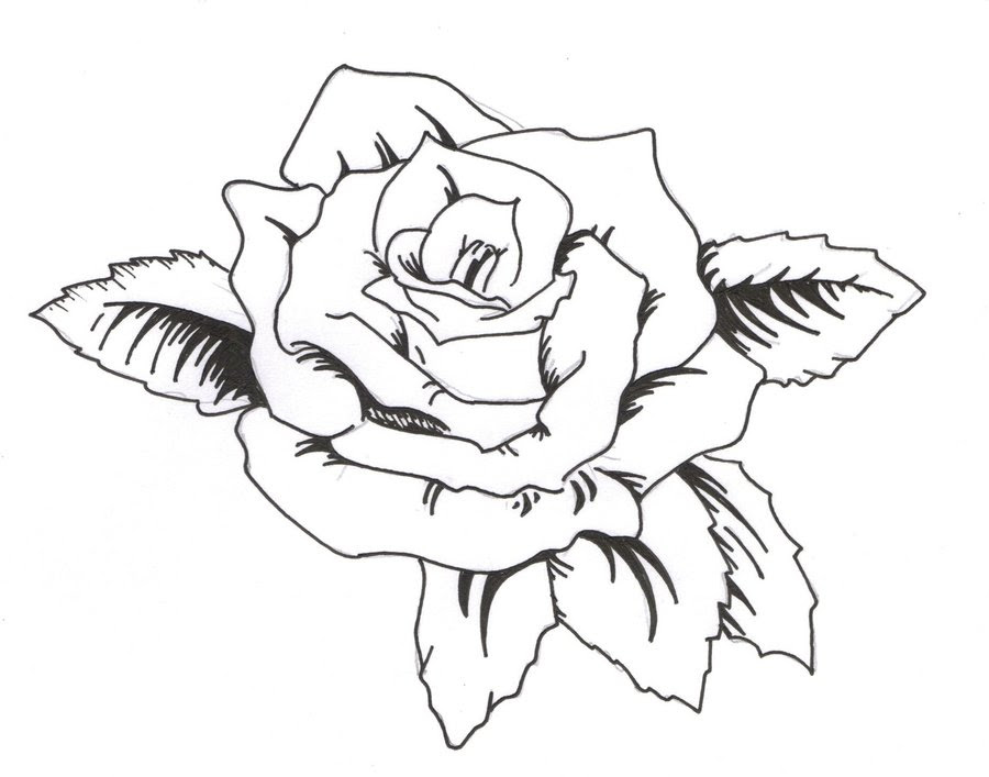 Latest Outline Rose Tattoo Design
