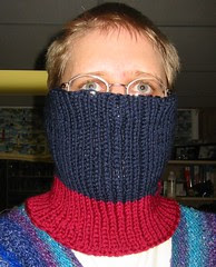 Not-A-Scarf Neck and Face Warmer
