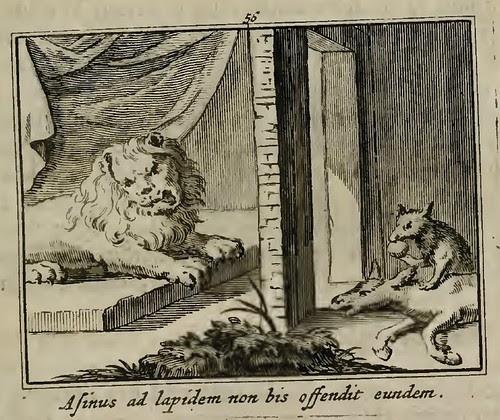 Leo, Vulpes et Asinus sine Corde