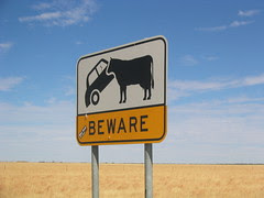 Car-eating Cow Sign, Outback, Queensland by NickZse
