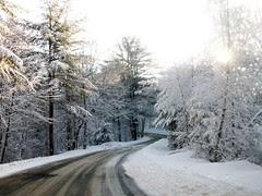 Snow_22009b