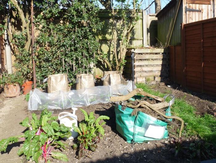 Garden cleared of debris