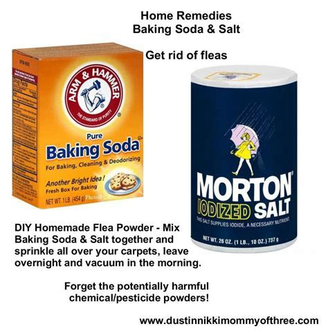 DIY Flea Powder for Your Home ? Get Rid of Fleas w/o Using Chemicals & Pesticides ? Baking Soda