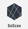 Interactive Network Scanner: GoScan