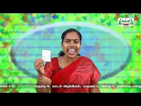 3rd Science எனது உடல் அலகு 1 Kalvi TV