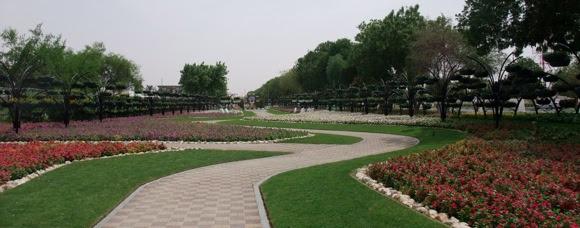Al-Ain-Paradise-3