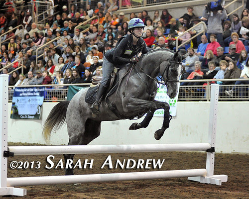 Michelle Warro and Gunport at the PA Horse World Expo