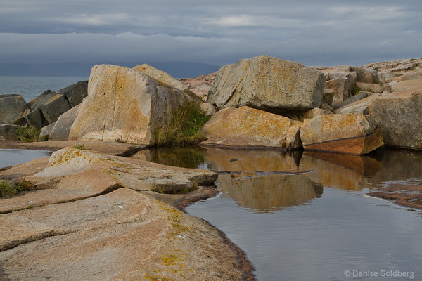 painted rocks, Schoodic Peninsula