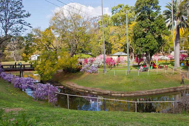 Wisteria Gardens Fete