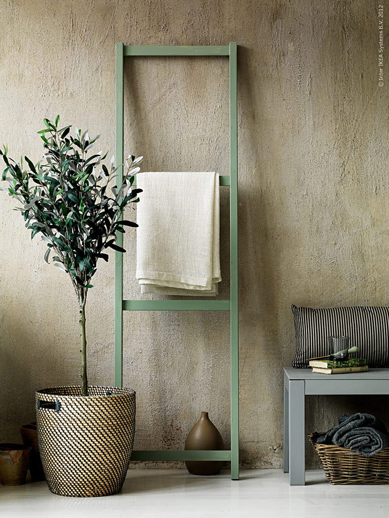 Indoor Olive Trees - Honestly WTF