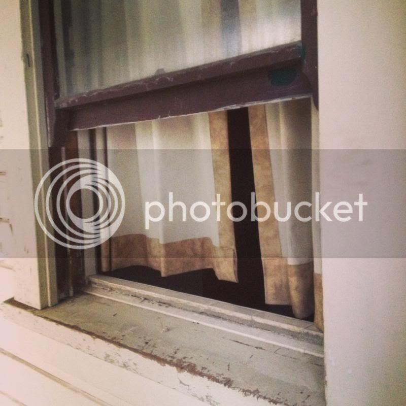 photo photo3_zpsac58e093.jpg