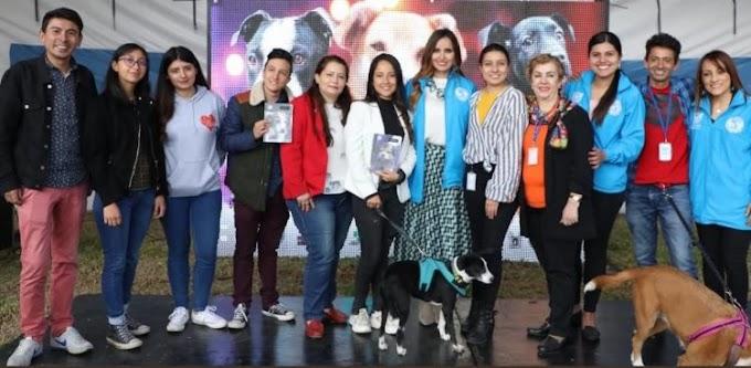 Perritos rescatados podrán dejar atrás su triste pasado gracias a estos cuadernos solidarios