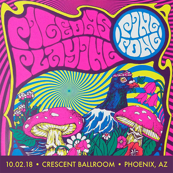 Image result for pigeons playing ping pong arizona live downloads 2018