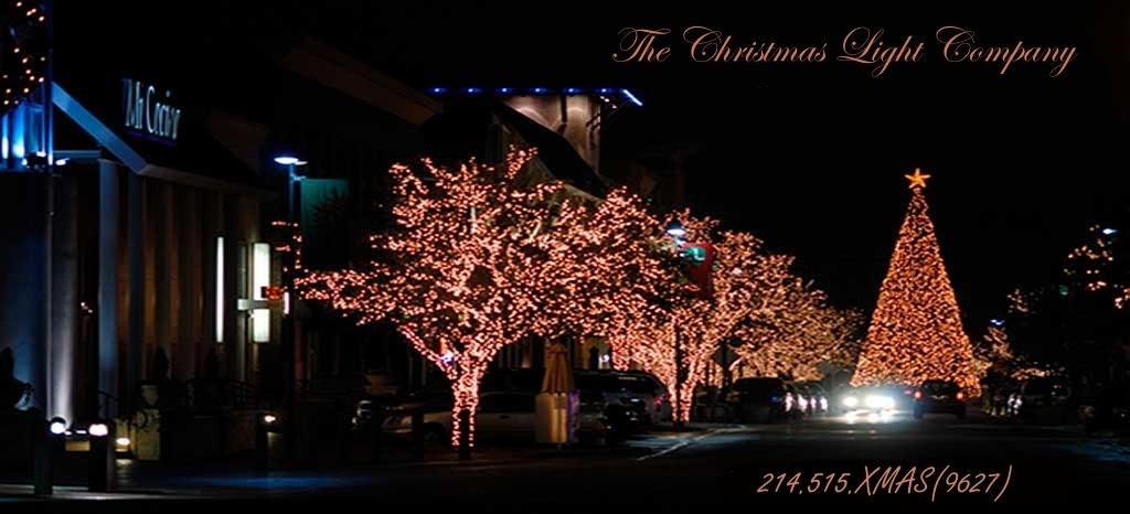 - Christmas Light Company Christmas Ideas