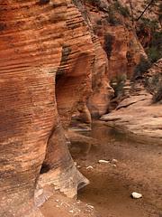 Canyon Wall and Pool