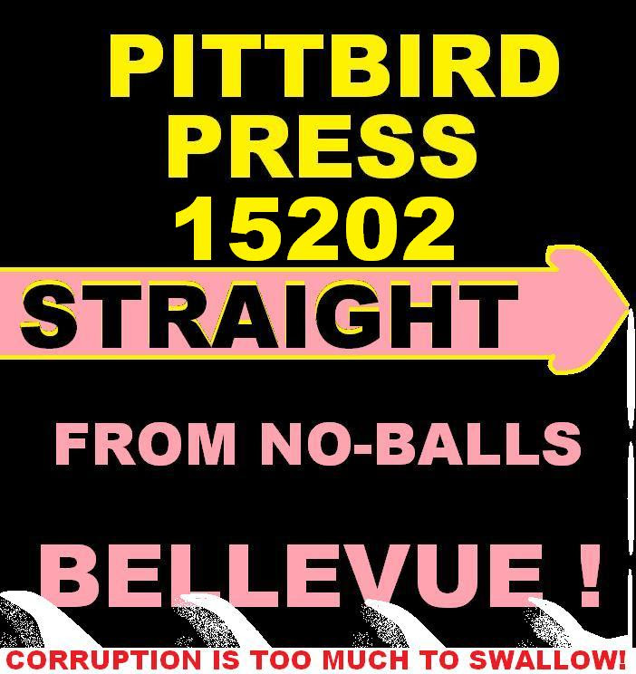 """PITTSBURGH'S ED JITNEY SAYS """"DON'T BE BRAIN-DEAD""""...911 IN ..."""