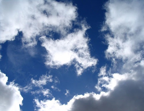 El millor espectacle... Mirant al cel!