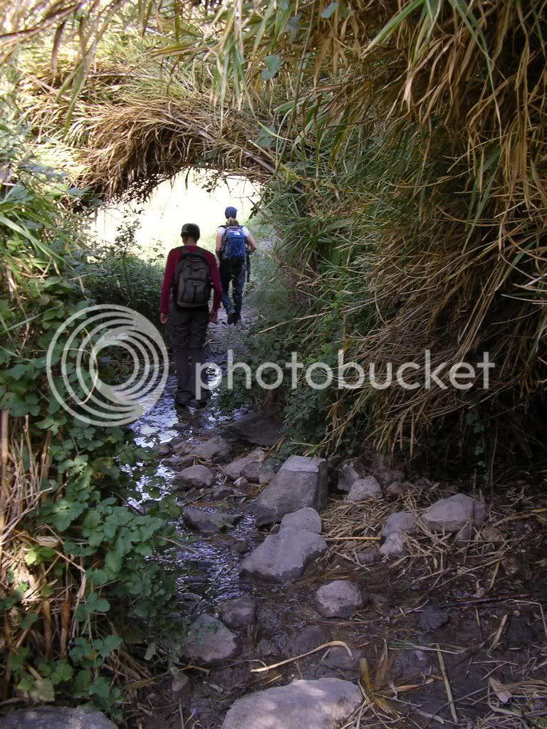 בדרך לנחל אל-על