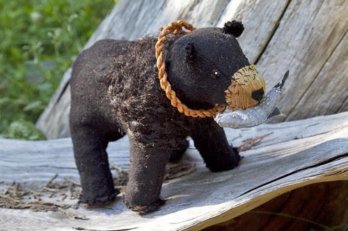 black bear 2.0