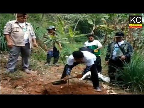 Gerakan Menanam Pohon Bersama BAZNAS Kab. Cianjur