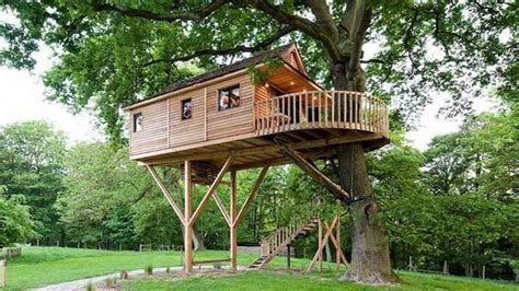 treehouse architecture top  tree house ideas