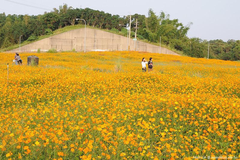 孔宅綠園 (19).jpg