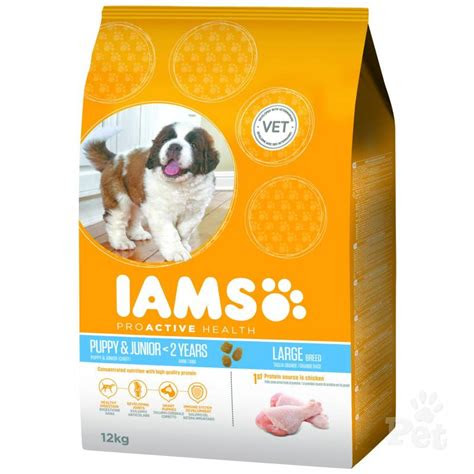 iams large breed puppy food