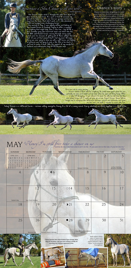 2014 Horses and Hope preview: MAY... the Story of Slim Chance