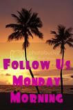 Follow Us Monday Morning Blog Hop