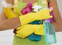 Photo of cleaning supplies
