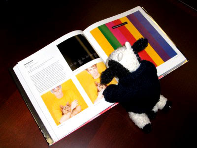 Pet Shop Boys book!