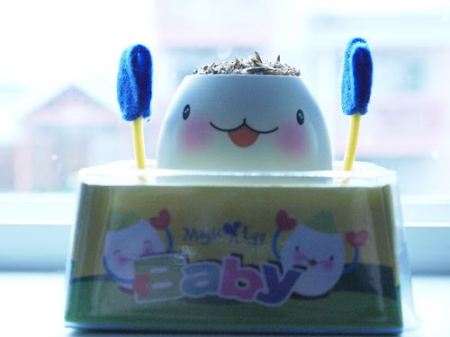 Egg baby!