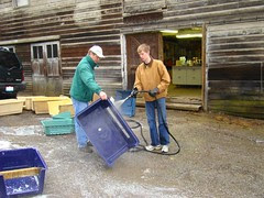 Craig and Russ cleaning carriers