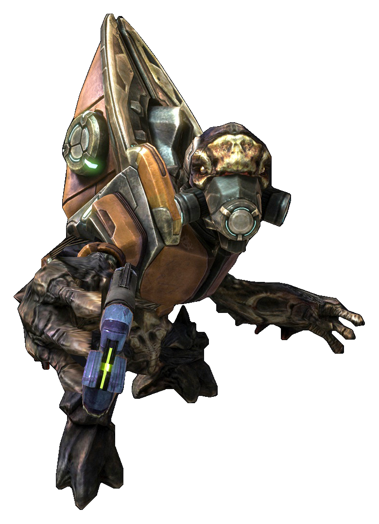 http://vignette4.wikia.nocookie.net/halo/images/6/6b/HReach_-_Unggoy.png/revision/latest?cb=20150124194722
