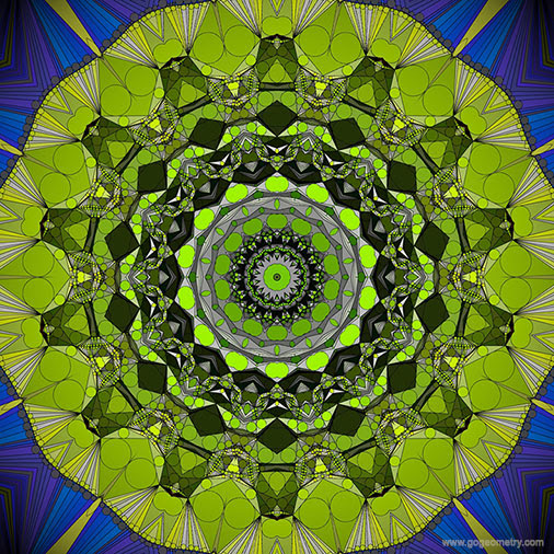 Geometric Art: Kaleidoscope of Gecko Patterns 5 using iPad Apps, Software.