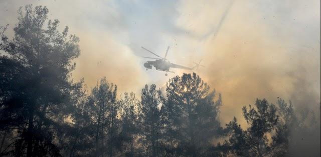 Φωτιά και στη Λίμνη Ευβοίας: Εντολή για εκκένωση οικισμού - Κοντά υπάρχουν κατασκηνώσεις