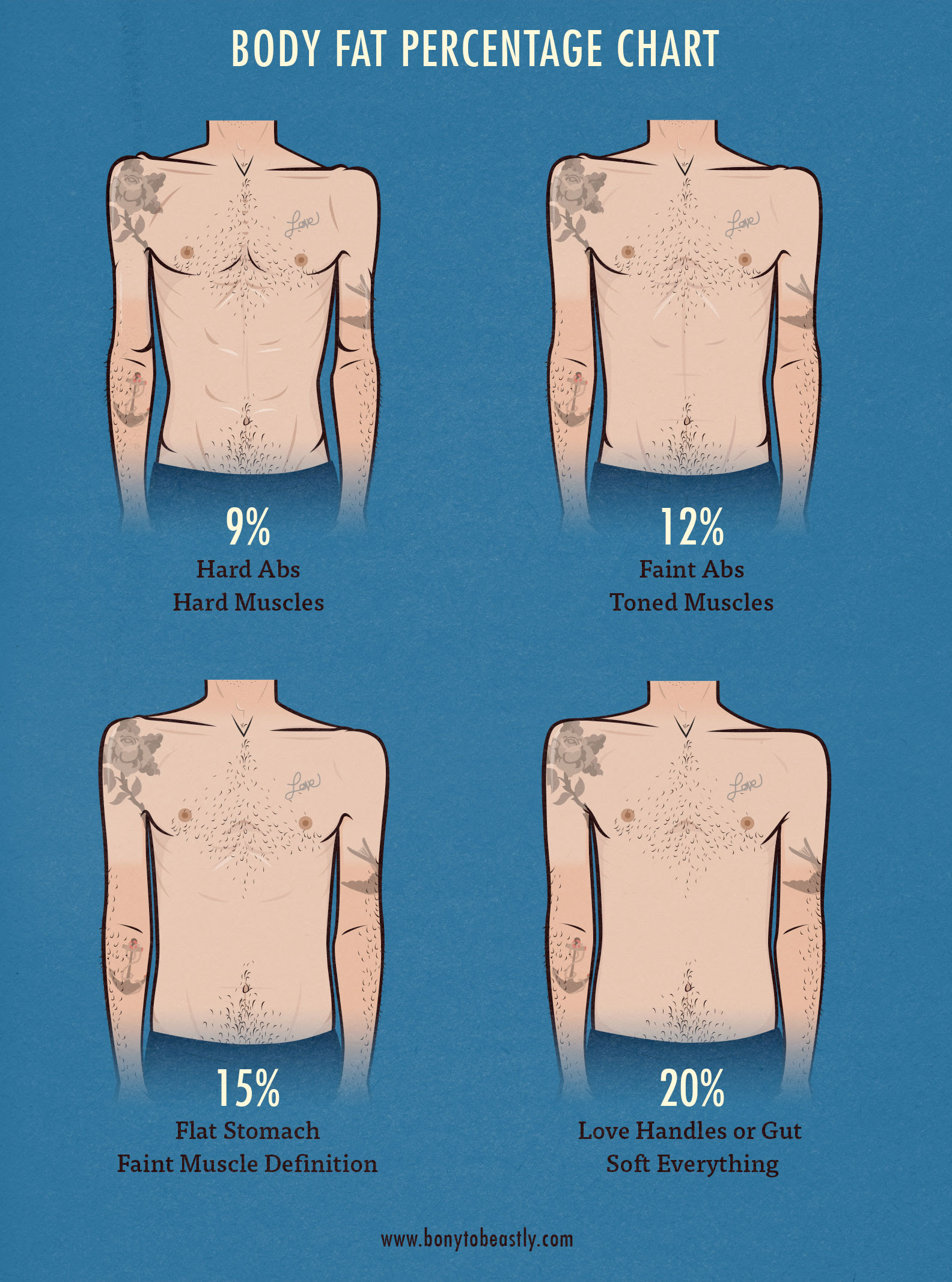 body fat percentage to see definition