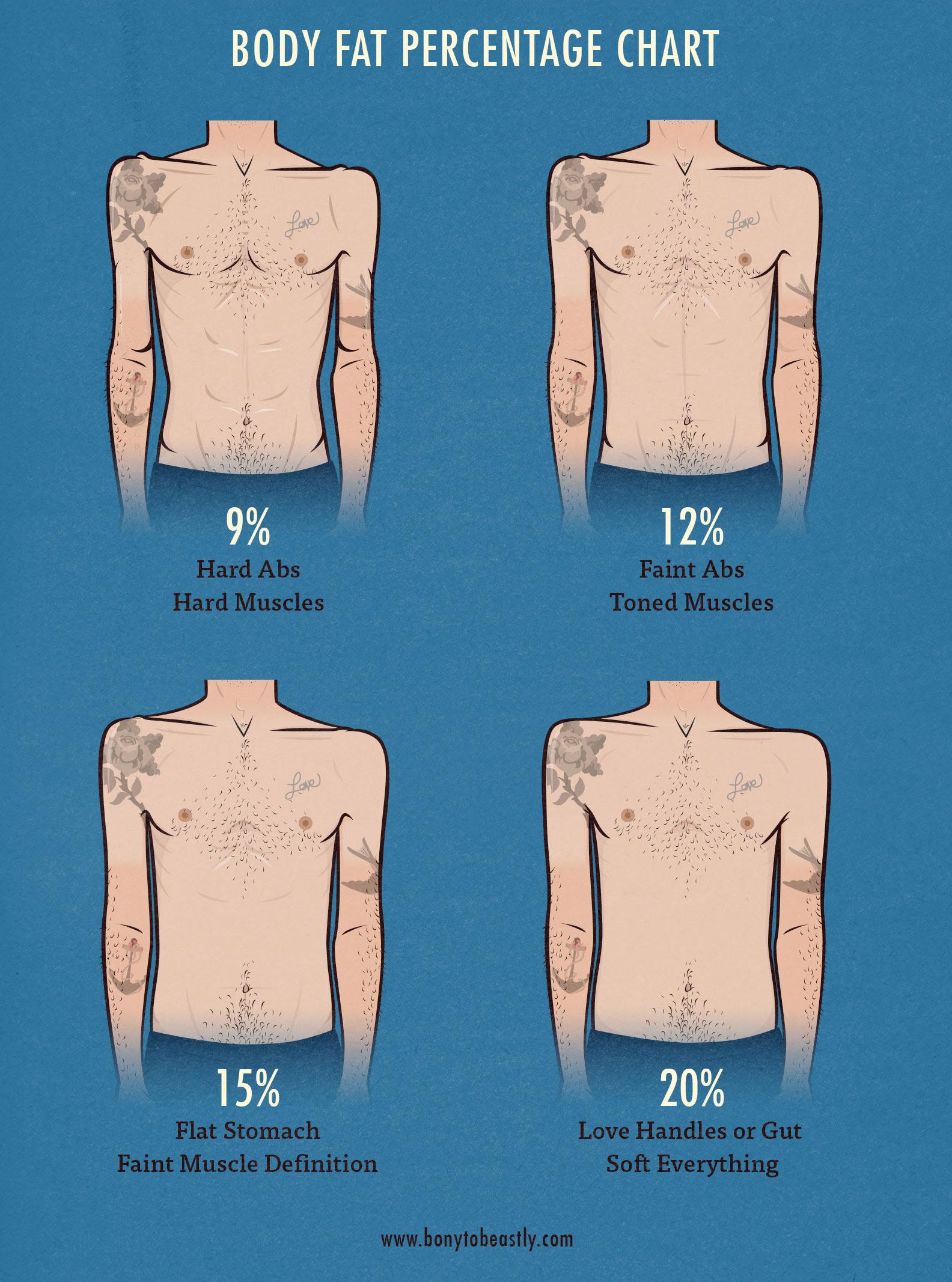 body fat percentage chart accu measure