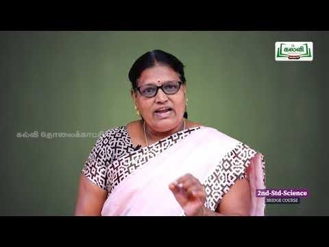2nd EVS சூழ்நிலையியல் சுவையான உணவு அலகு 3 Kalvi TV