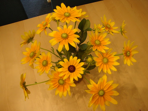 Princeton Farmer's mkt flowers 6/30/11