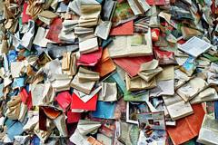 Alicia Martin: Biografias - Cascade of books, Photo aus Linz, Flickr, CC-BY-SA
