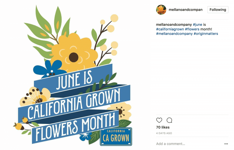 June California Cut Flower Month