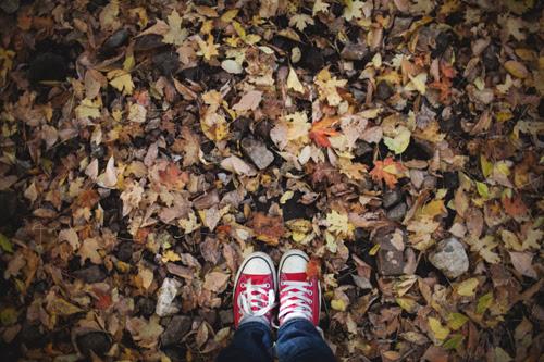 fall23 copy