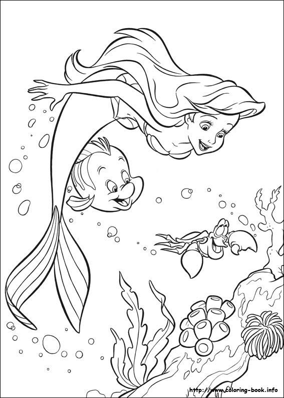Boyama Kitaby Deniz Resim Cizmek