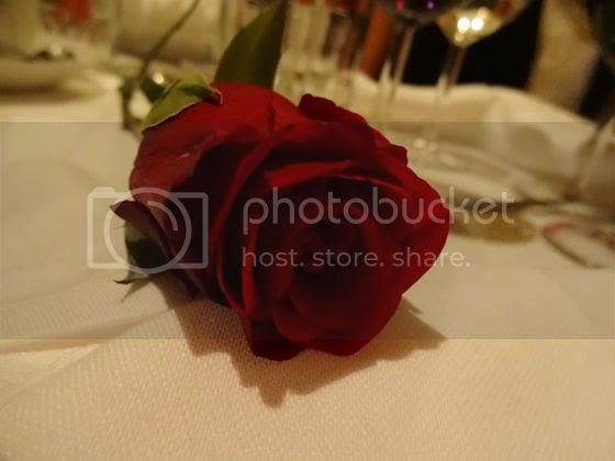 photo 1501736_10205446815152545_3962510057123931902_n_zpsc765ff1e.jpg
