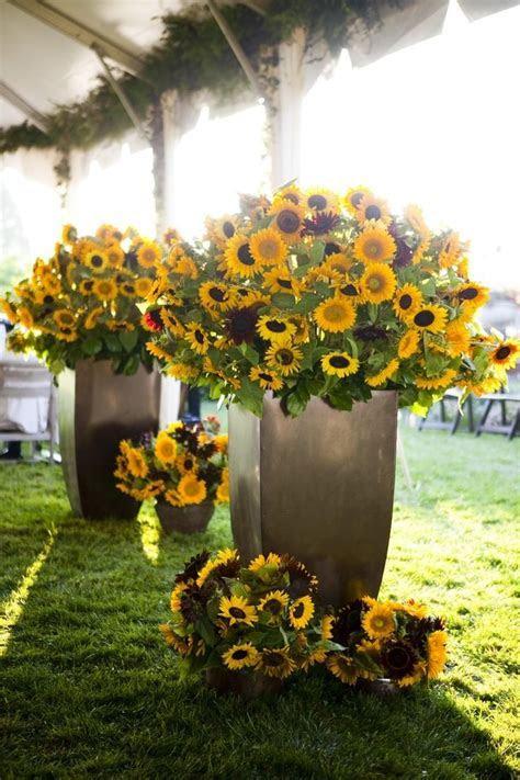 Best 20  Red sunflower wedding ideas on Pinterest