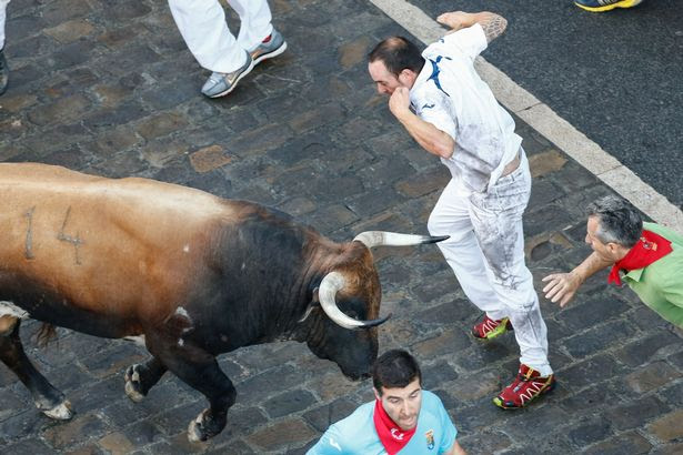 People run with the bulls